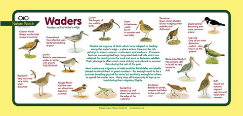 'Waders' Nature Watch Plus Panel