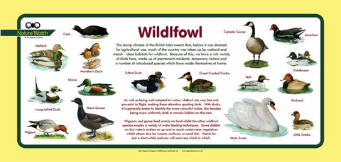 'Wildfowl' Nature Watch Plus Panel