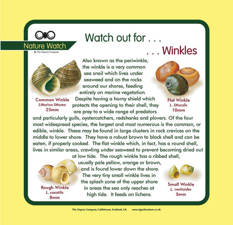 'Winkles' Nature Watch Panel