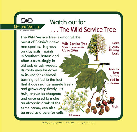 'Wild service' Nature Watch Panel