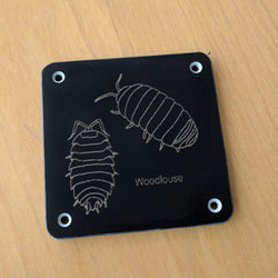 'Woodlouse' rubbing plaque