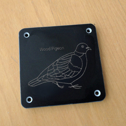 'Wood pigeon' rubbing plaque
