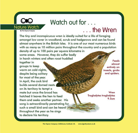 'Wren' Nature Watch Panel