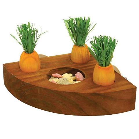 Boredom Breaker Carrot Toy And Treat Holder-Package Pets