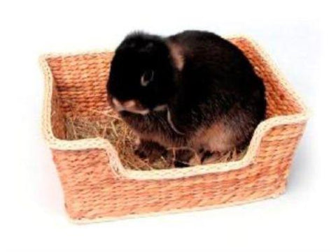 Safe To Chew Bed Basket-Package Pets