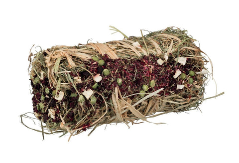 Trixie Small Animal Hay Bale with Beetroot & Parsnip-Package Pets