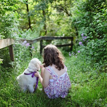 Finding the Perfect Dog for Children With Allergies