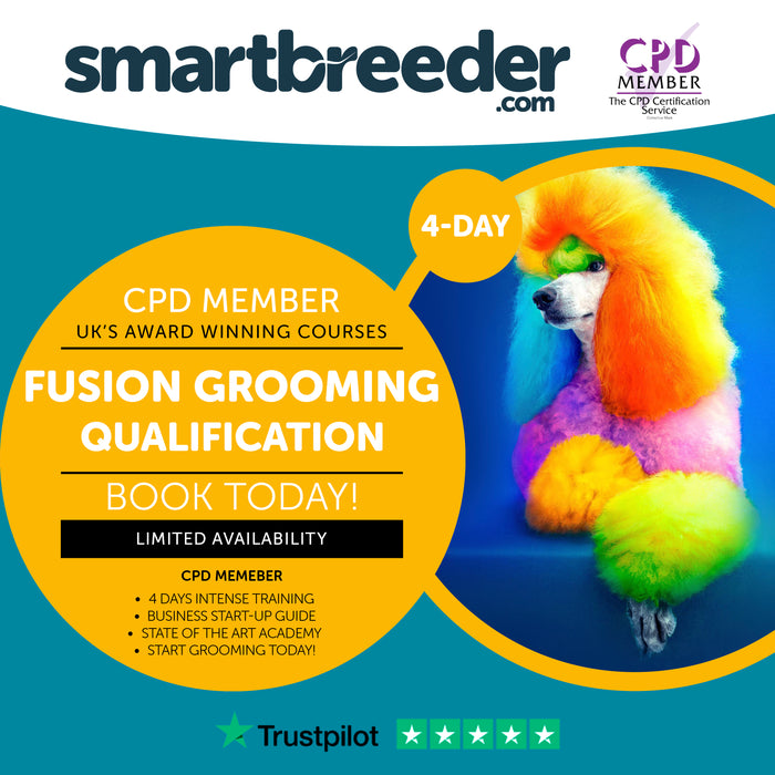 NEW - Asian Fusion Dog Grooming Course - SmartBreeder.com