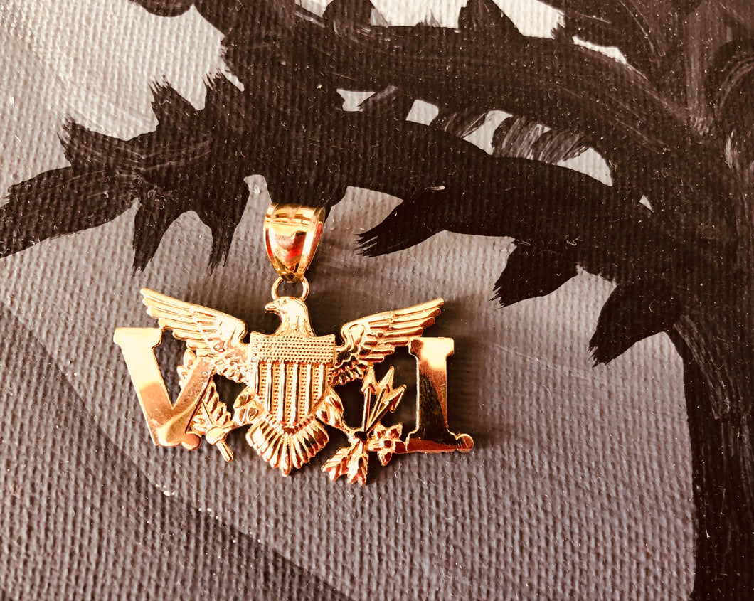 10k gold VI Eagle pendant (2 inches wide)