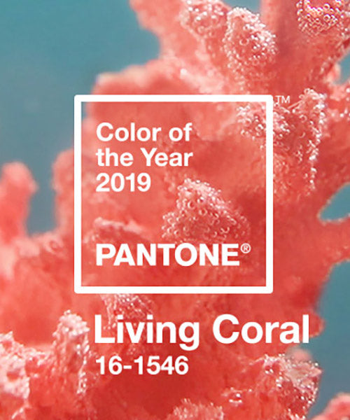 Living Coral:  The Color of 2019 and What You Need to Know