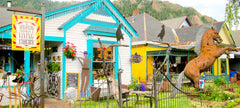 Aspen Emporium and Flying Circus