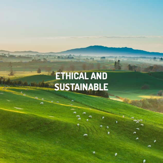 ETHICAL AND SUSTAINABLE