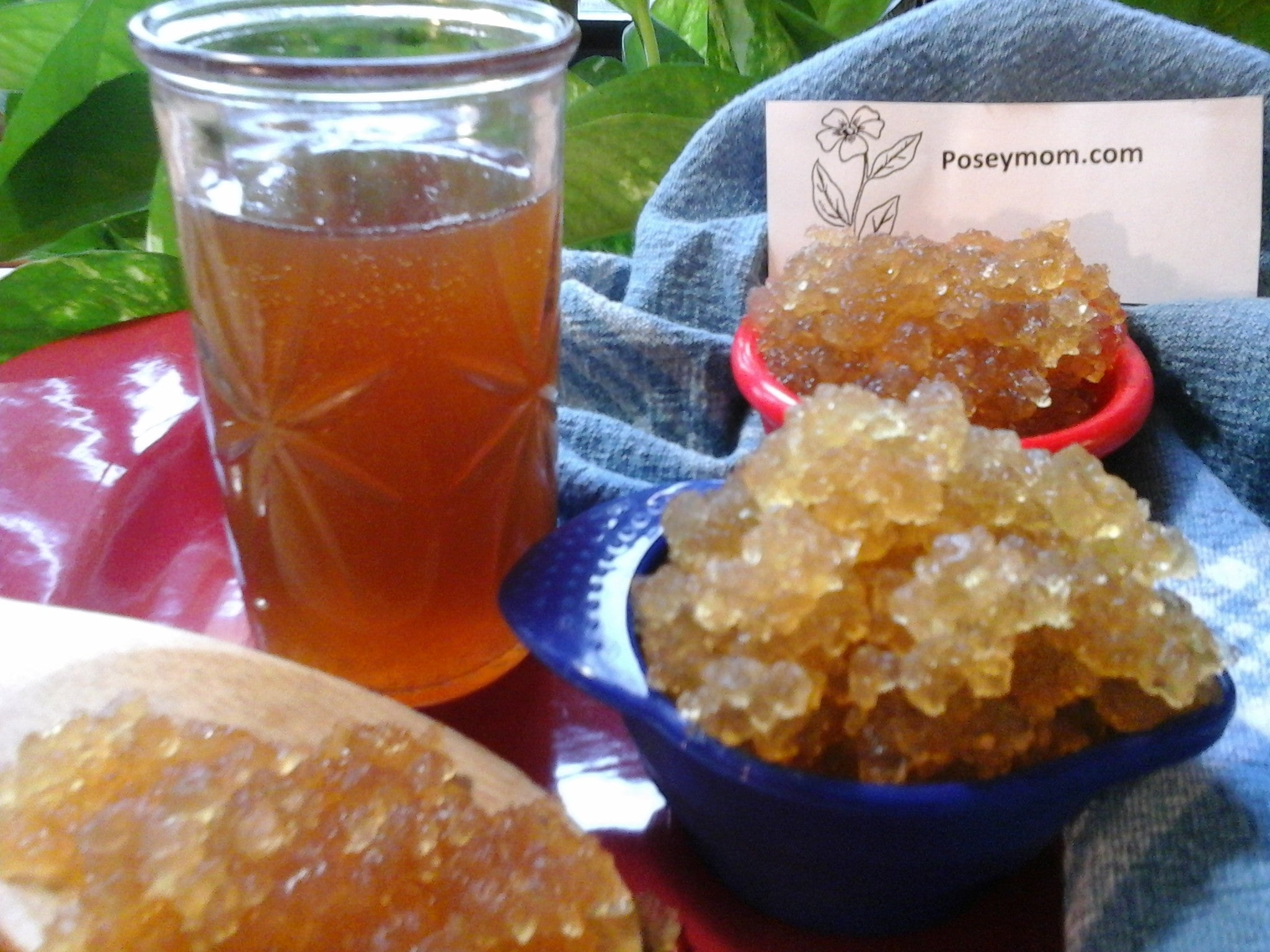 Live Water Kefir Grains