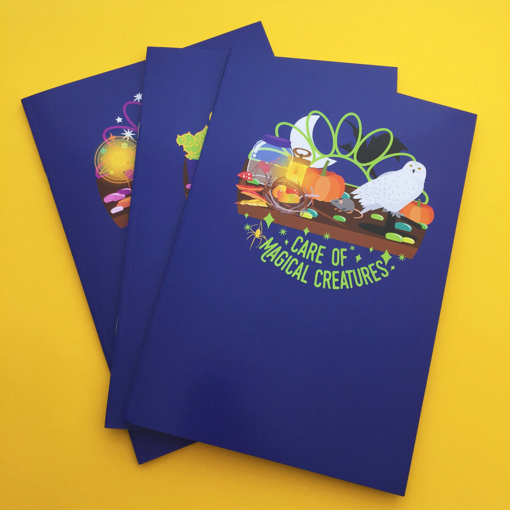 Wizard Class - A5 3 Pack of Notebooks - Hand Over Your Fairy Cakes - hoyfc.com