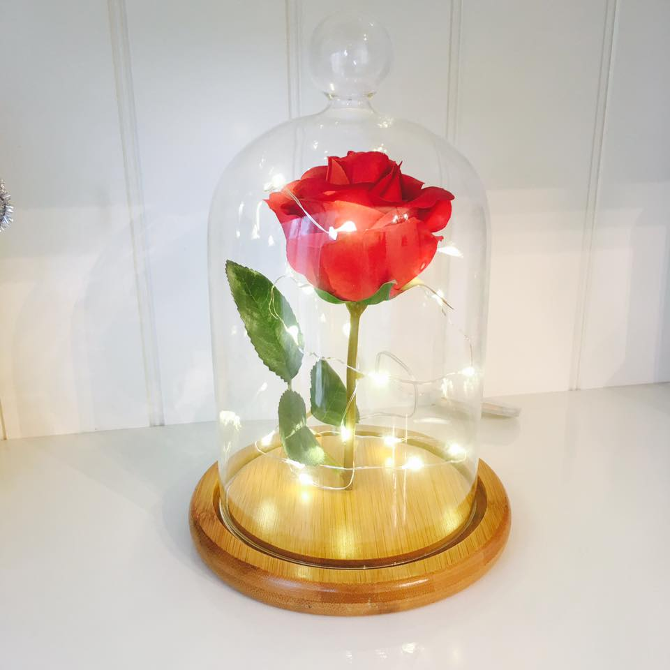 Rose in a Dome- LARGE ** LIMITED AVAILABILITY **