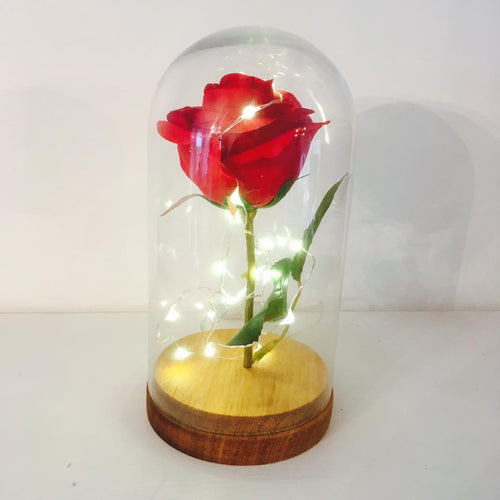Rose in a Dome- Small ** LIMITED AVAILABILITY **
