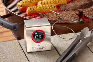 Best wireless meat thermometer for BBQ, grilling and smoking