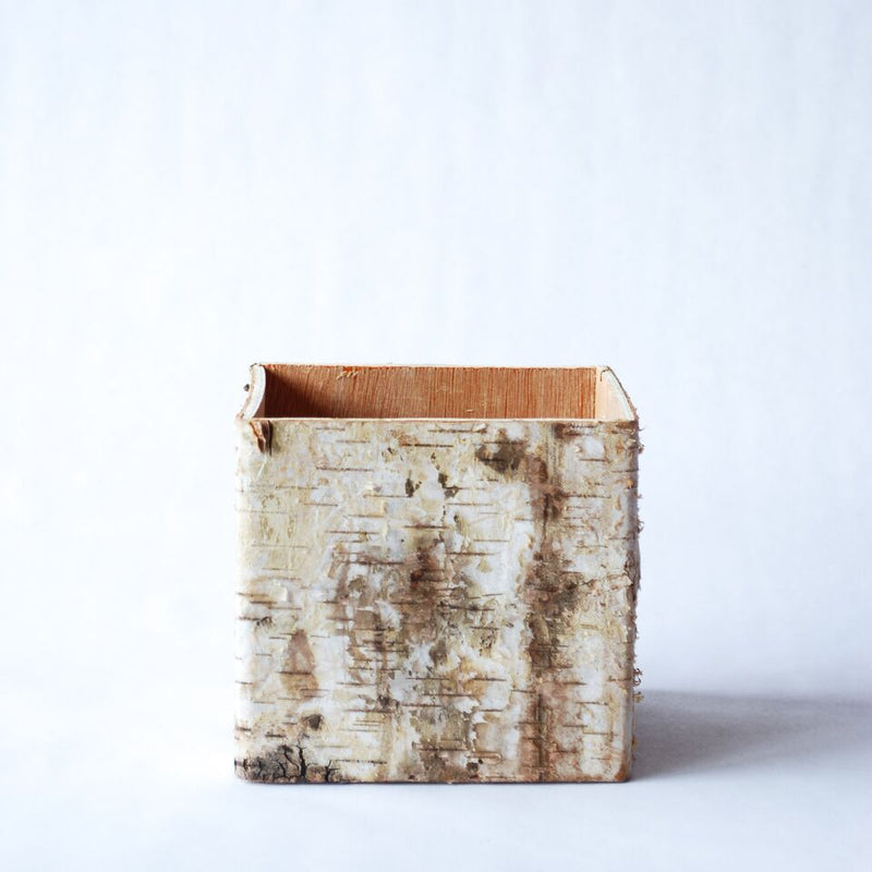 Birch-Wrapped Flower Vase