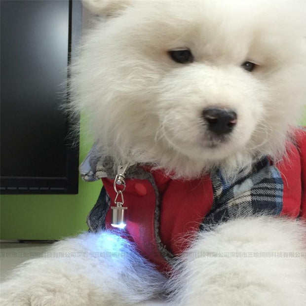LED COLLAR PET