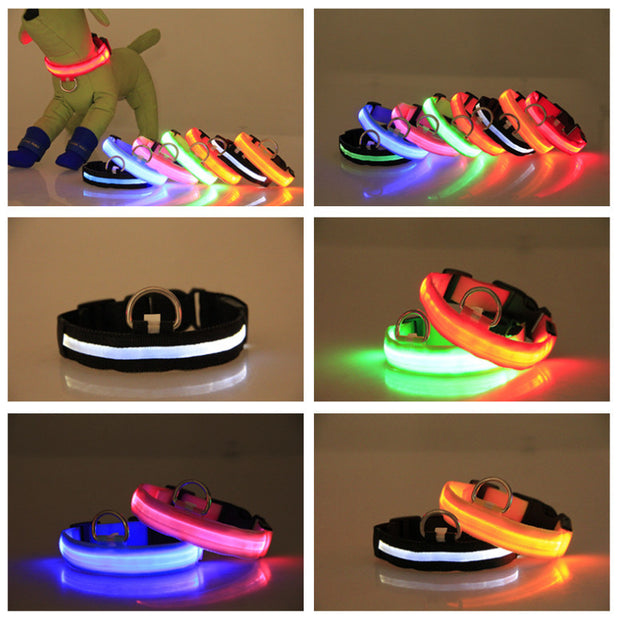 METAL BUCKLE LED DOG COLLAR USB RECHARGEABLE