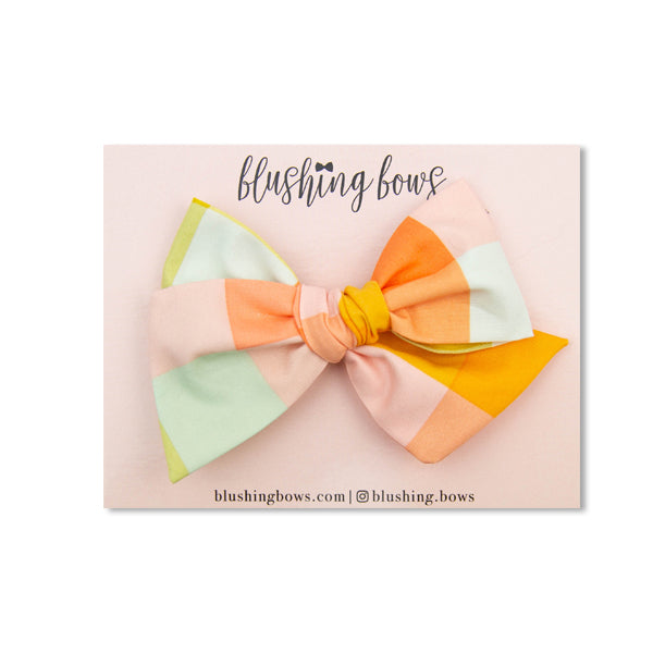 Colorful Picnic | Multiple Styles (Headband or Clip)