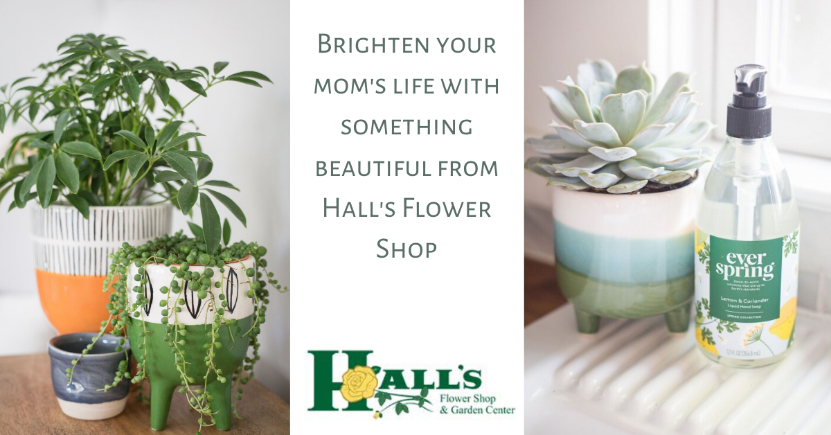 Hall's flower shop mother's day gift guide atlanta