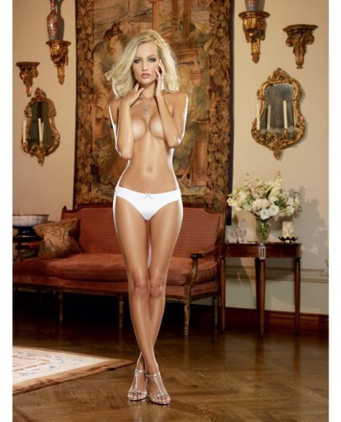 Microfiber Cheeky Panty W/cross Dye Lace Back & Satin Bow Trim White/silver Medium-Lingerie