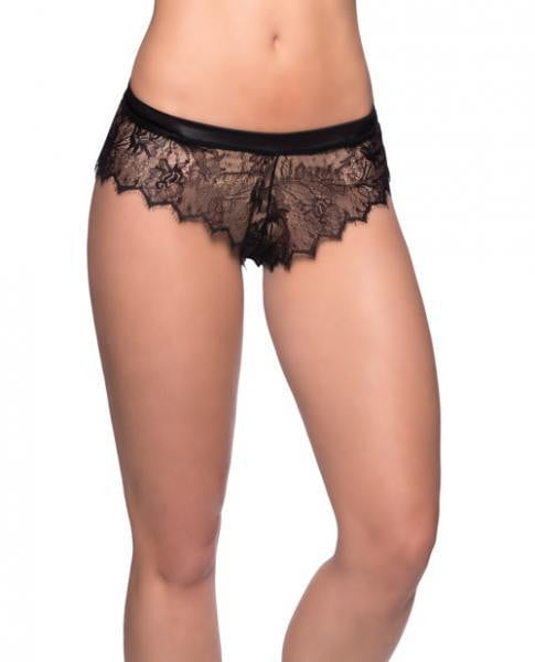 Open Back Eyelash Lace Satin Tie Panty Black L/XL-Lingerie