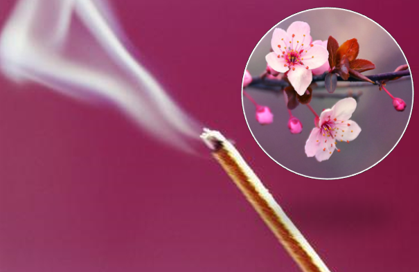 Japanese Cherry Blossom Incense 25 Pack