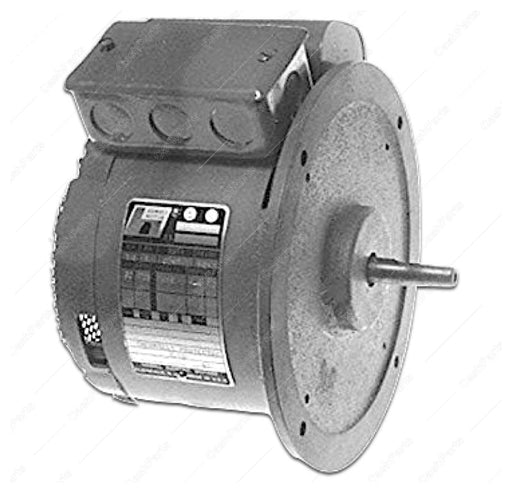 Burn213 115V Motor Electrical