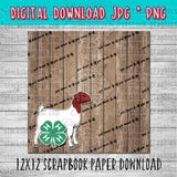 4-H Boer Doe Goat Scrapbook Paper 12x12 Digital Download
