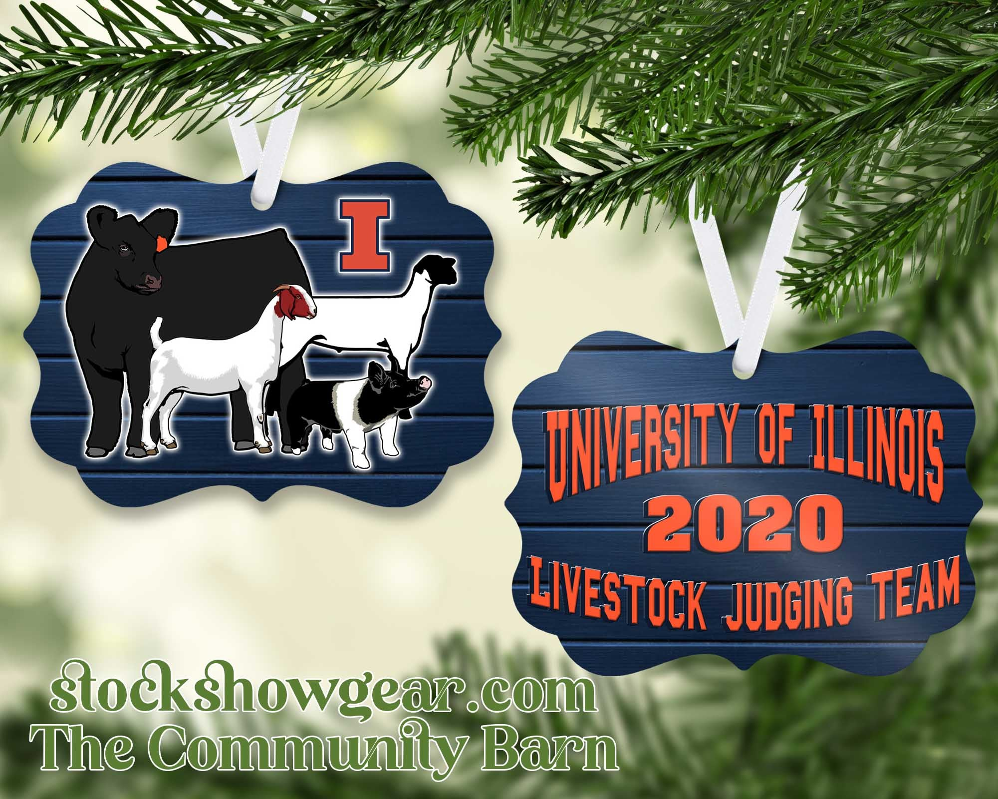 University of Illinois Livestock Judging Team