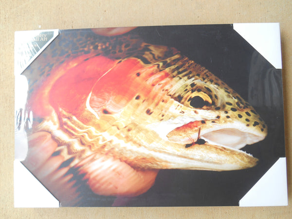 "Denver Bryan Print Fish Frameless Art  12"" by 13"" Wall Art by BIG SKY CARVERS"