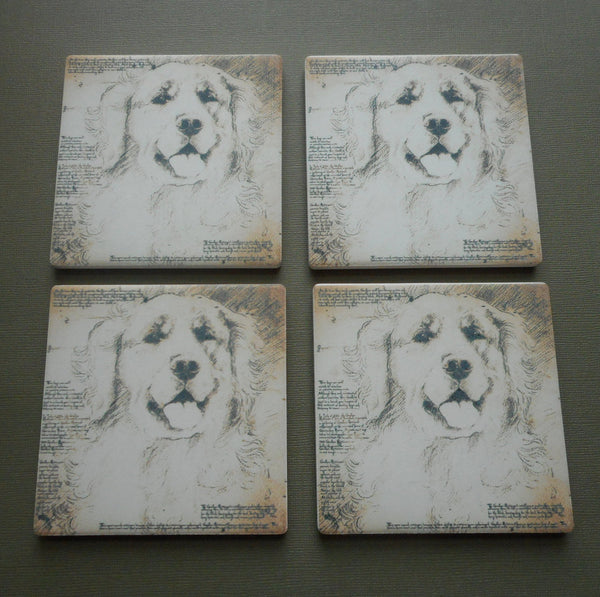 Big Sky Carvers Dog Coasters