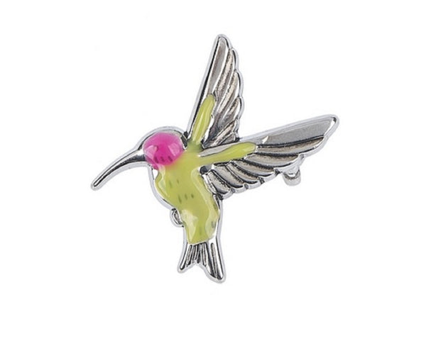 The Hummingbird Symbol of Life and Joy Charm with Story Card