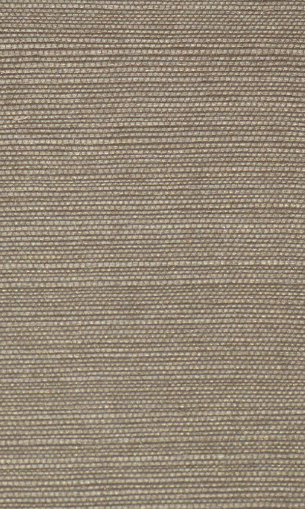 Allure Metallic Grasscloth Wallpaper 070292