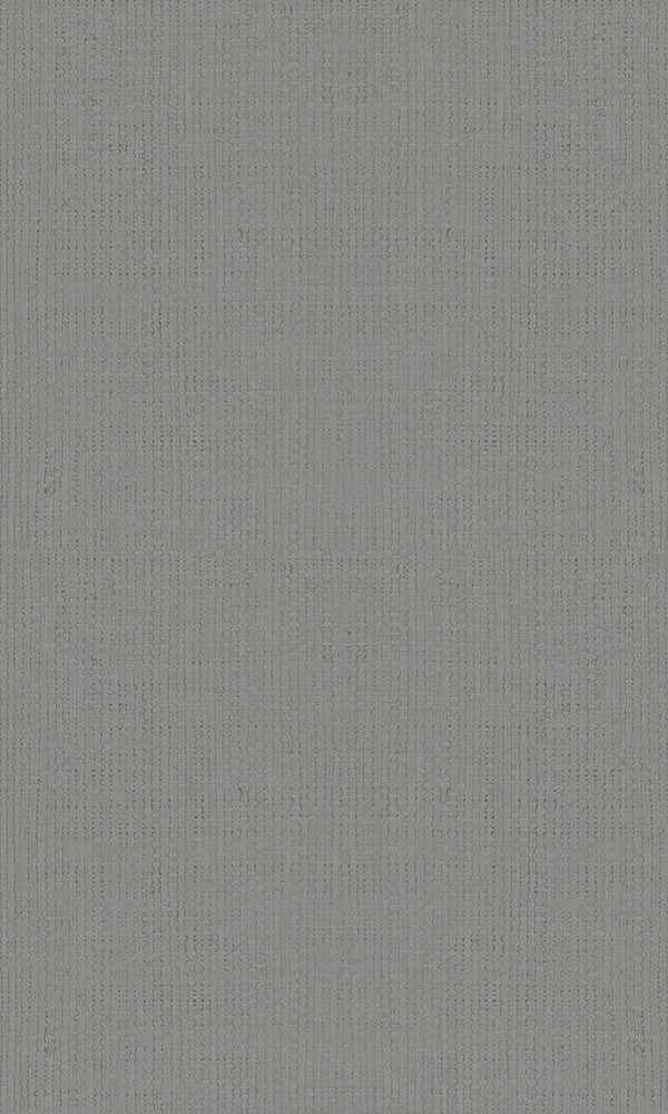 Casual Grey Textured Plain Weave 30449