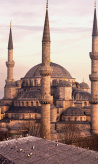 City Love Istanbul Mosque Wallpaper CL41A