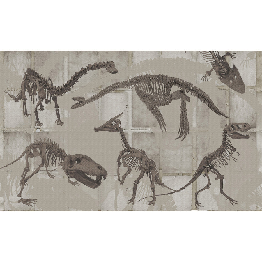 Custom Murals Dinosaurs Wallpaper DIN-100B