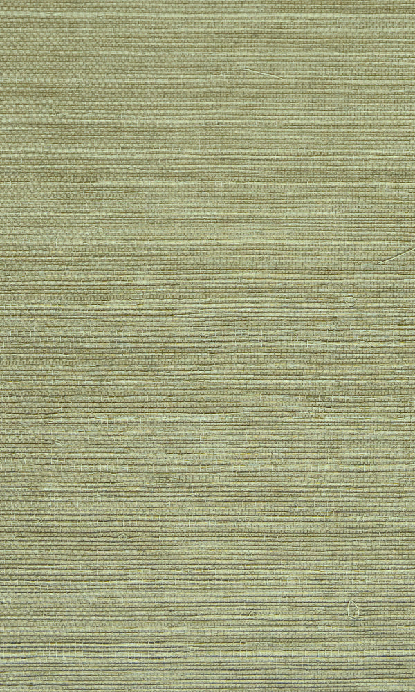 Grasscloth  Ramie Wallpaper GPW-NYSD-0509