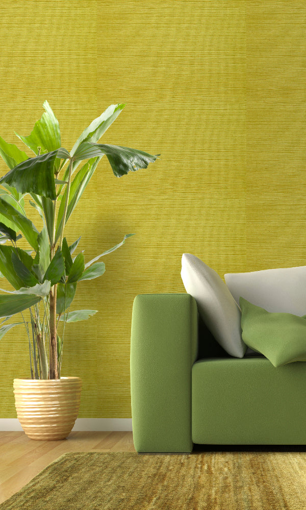 Grasscloth  Ramie Wallpaper GPW-NYSD-0803