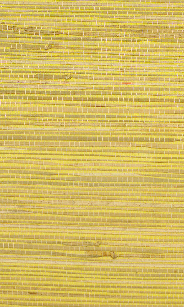 Grasscloth  Kapok Wallpaper GPW13-1003