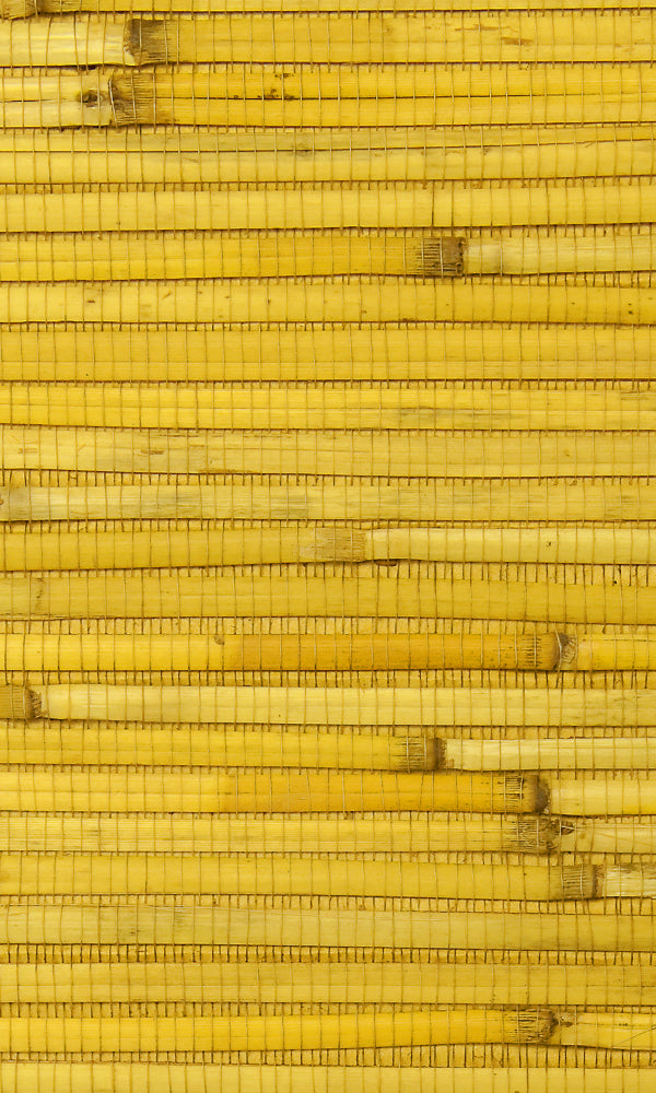 Grasscloth  Pina Wallpaper GPW24-502