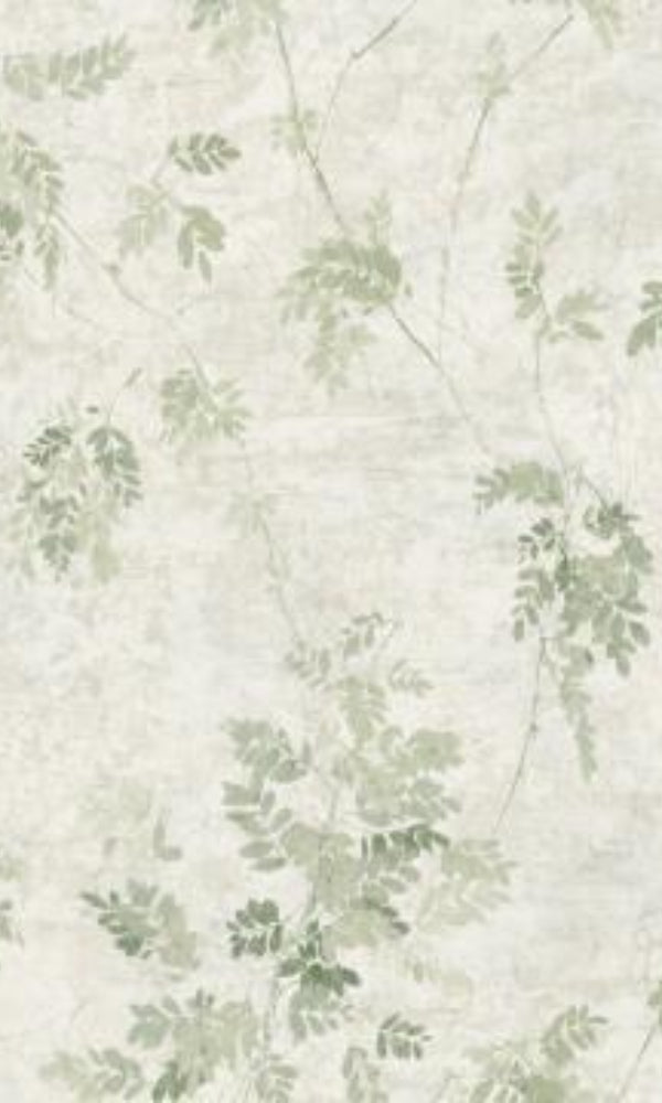 Brockhall Vintage Vines Wallpaper NH20304