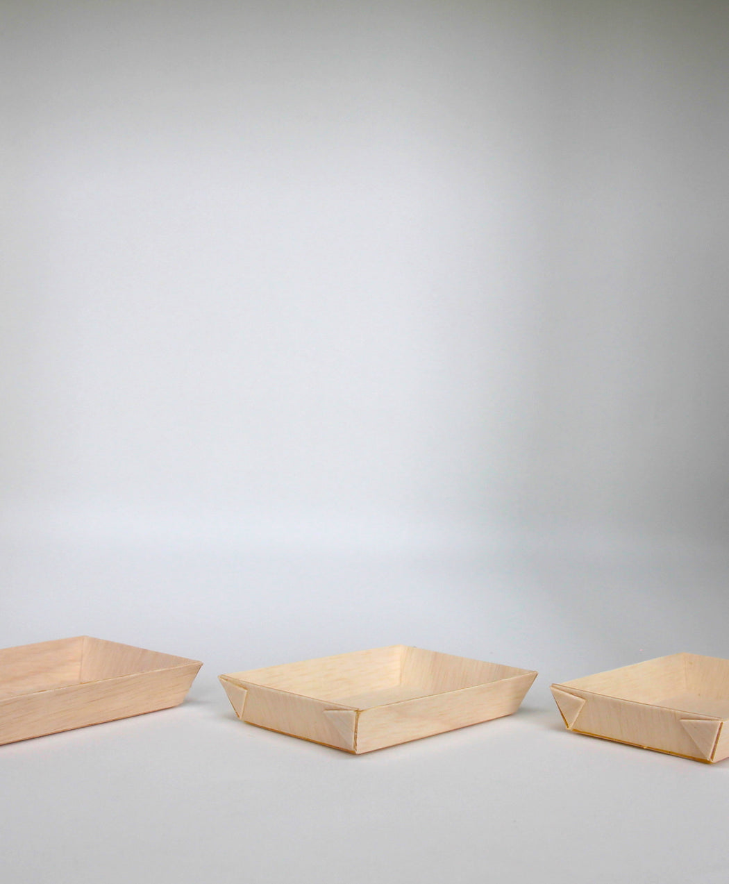 Wooden Appetizer Small Plate (Set of 12)