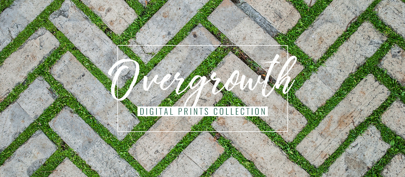 Overgrowth living wall wallpapers