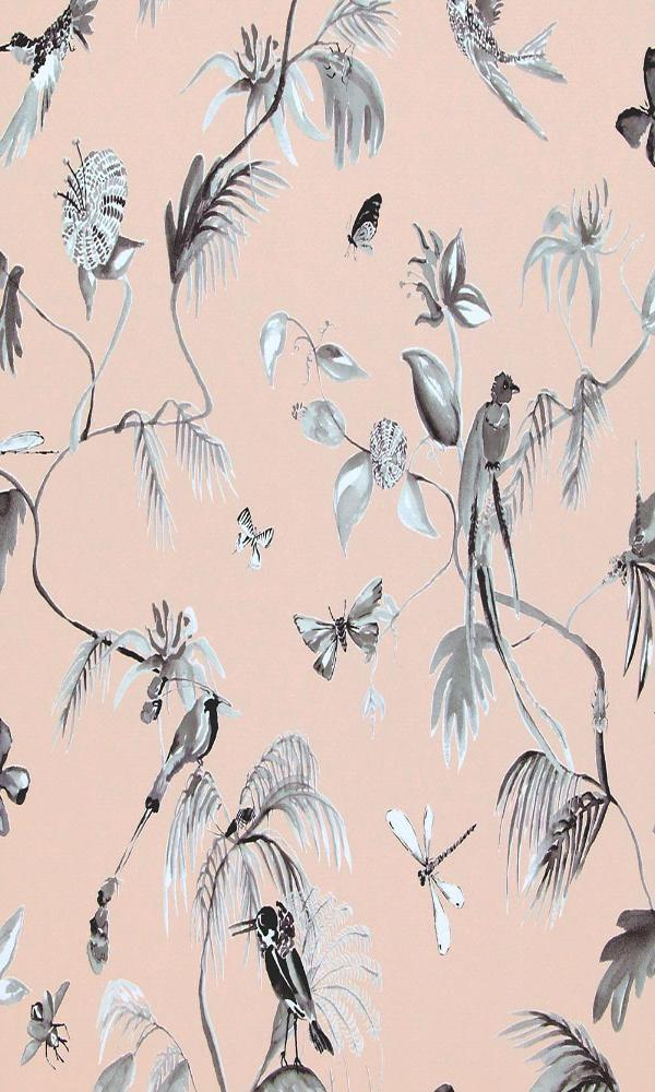 Designed for Living Humming Bird Wallpaper 17713