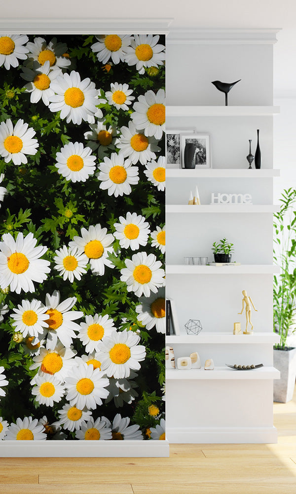 overgrowth daisies living wall wallpaper mural