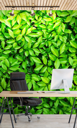 overgrowth leaf cover living wall wallpaper mural