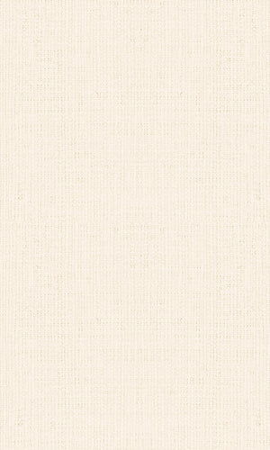 Casual Beige Textured Plain Weave 30459